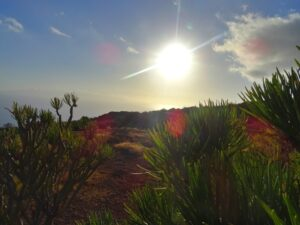 Land for sale near to Los Gigantes